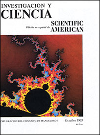 geometria fractalica caso fractales